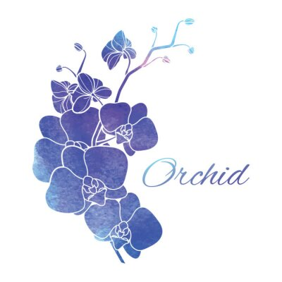 Sticker Painted Purple Watercolor Orchids