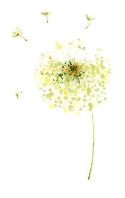 Sticker Painting, drawing, vector illustration - air dandelions