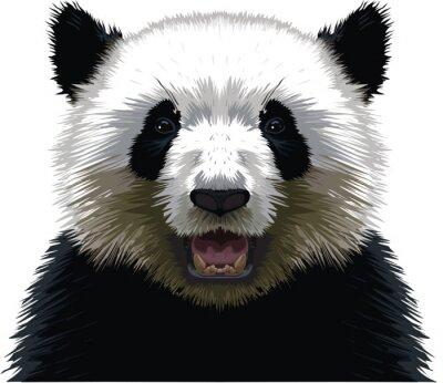 Sticker PANDA - Buste