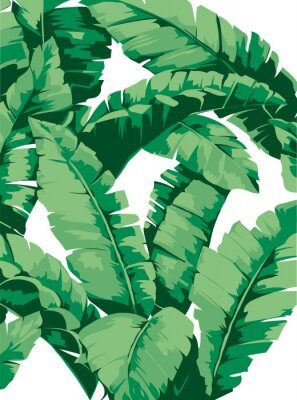 Sticker Pattern banana tree and leaves that it is a tropical plant on white background, flat line vector and illustration.