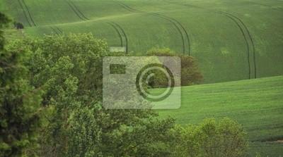 paysage  vallonés
