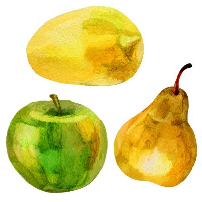 Sticker Pear, banana hand drawn painting watercolor illustration on white background