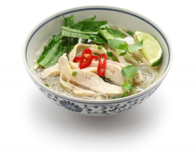 Sticker pho ga, vietnamese chicken rice noodle soup