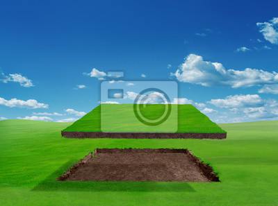 piece of green land