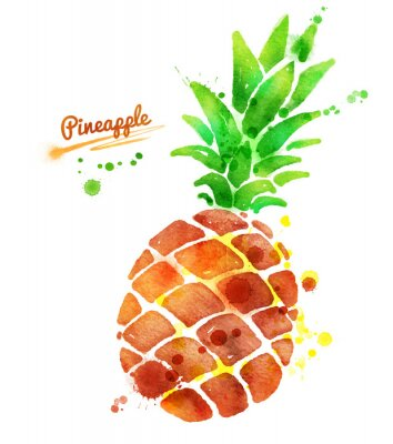 Sticker Pineapple with paint splashes.