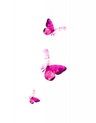 Sticker Pink flying butterflies in watercolor. Mixed media. Vector illustration