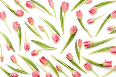 Sticker Pink tulip pattern on the white bacjkground.