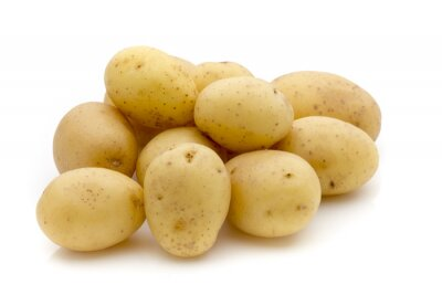 Sticker Potatoes on the white background.  New harvest.
