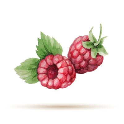 Sticker Raspberry