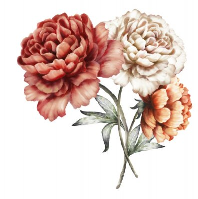 Sticker red peonies. watercolor flowers. floral illustration in Pastel colors. bouquet of flowers isolated on white background. Leaf. Romantic composition for wedding or greeting card.