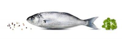 Sticker Sardine