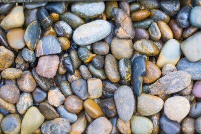 Sticker Sea stones