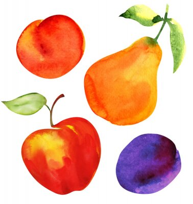 Sticker Set of fruits. Apple, pear, plum and apricot.