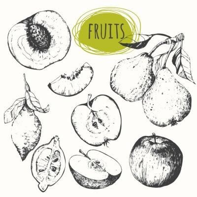 Sticker Set of hand drawn apple, lemon, pear, peach. Sketch fruits.