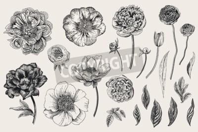 Sticker Set of Spring flowers. Vintage vector botanical illustration. Black and white