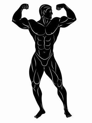 Sticker silhouette of bodybuilder , vector drawing