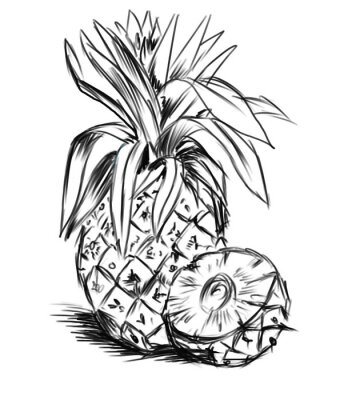 Sticker sketch for pineaple