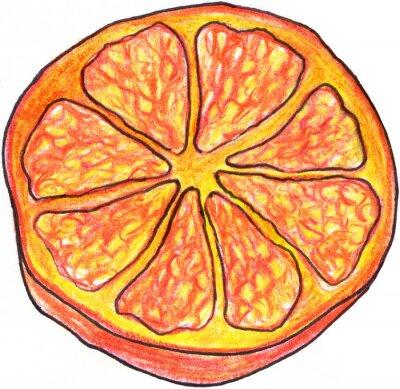 Sticker Sketch orange slice hand drawn isolated