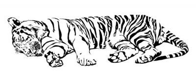 Sticker Sleeping Tiger.