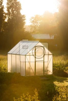 Sticker Small greenhouse in backyard in a golden light of dawn
