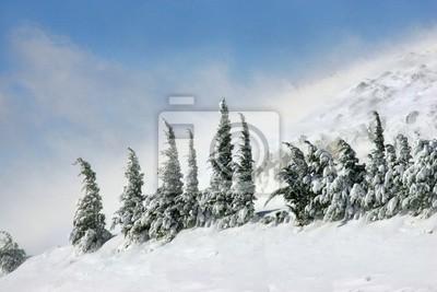 Sticker snow 1