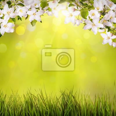 Spring background_6