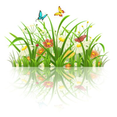 Sticker Spring grass, flowers and butterflies with reflection on white