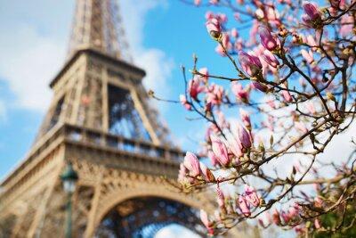 Sticker Spring in Paris