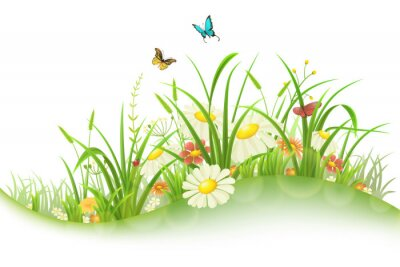 Sticker Spring summer meadow with green grass, flowers and butterflies