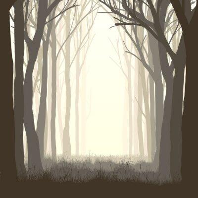 Sticker Square illustration glade in forest.