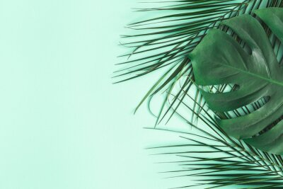 Sticker Summer composition. Palm leaves on mint background. Summer concept. Flat lay, top view, copy space
