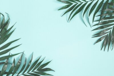 Sticker Summer composition. Palm leaves on pastel blue background. Summer concept. Flat lay, top view, copy space
