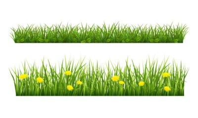 Sticker Summer grass