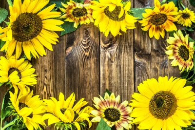 Sticker Sunflowers on rustic wood background. Flowers backgrounds.