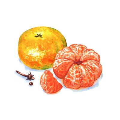Sticker tangerine or mandarin fruit isolated on white background