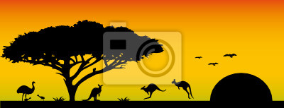 The landscape of Australia