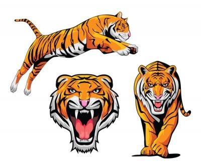 Sticker Tiger Illustration Set