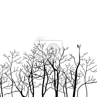 Tree branch2