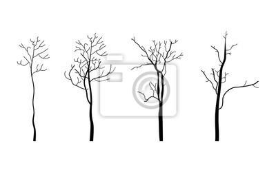 Tree branch3
