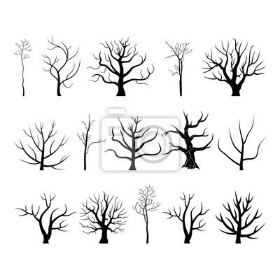 Tree branch4