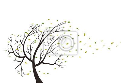 Tree wood4