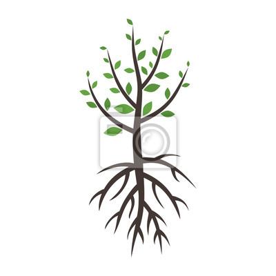 Tree wood5