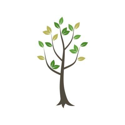 Tree wood7