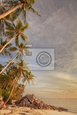Sticker tropic