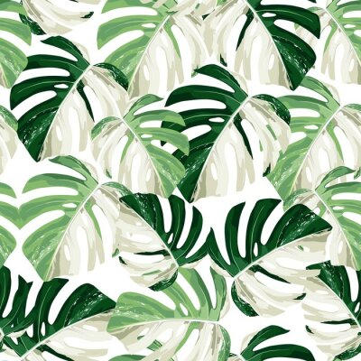 Sticker Tropic summer painting seamless pattern with exotic monstera leaves.