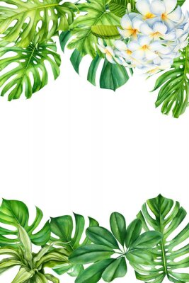 Sticker tropical leaves and flowers on an isolated background, greeting cards with space for text, watercolor painting, botanical illustration, floral design, plumeria, palms, monstera