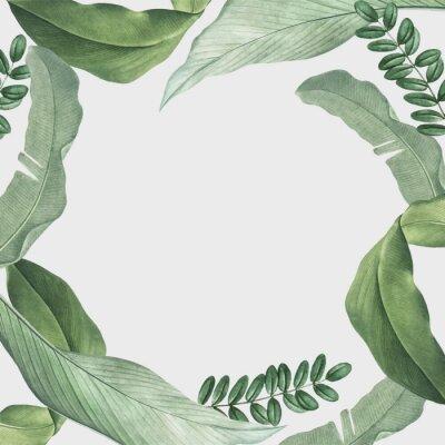 Sticker Tropical leaves frame