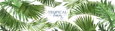 Sticker Tropical leaves web banner