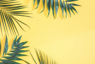 Sticker Tropical palm leaves on yellow background. Summer concept. Flat lay, top view, copy space