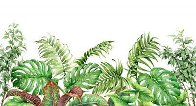 Sticker Tropical Plants Seamless Border